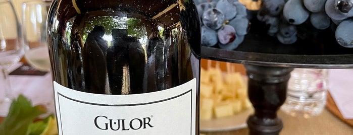 Gülor Winery is one of สถานที่ที่ Esra ถูกใจ.