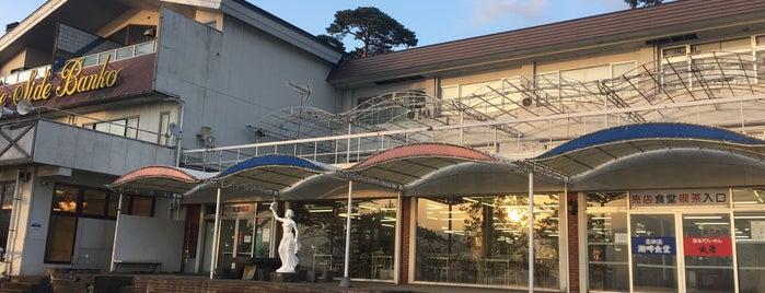 志田浜温泉 レイクサイド磐光 is one of Lugares favoritos de ジャック.