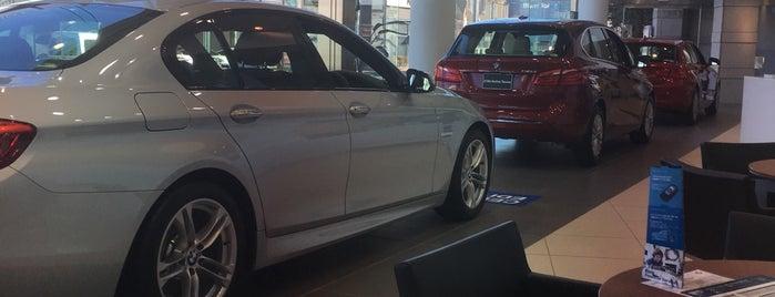 ビー・エム・ダブリュー東京株式会社 BMW杉並 is one of Lugares favoritos de ジャック.