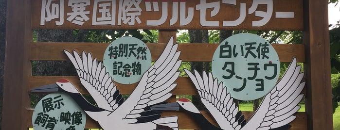 阿寒国際ツルセンター is one of ジャック'ın Beğendiği Mekanlar.