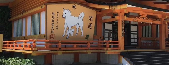 那智御瀧 飛瀧神社 is one of Lugares favoritos de ジャック.