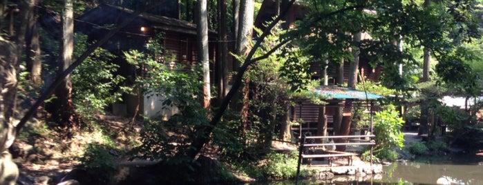 Kawai Campsite is one of 観光地.