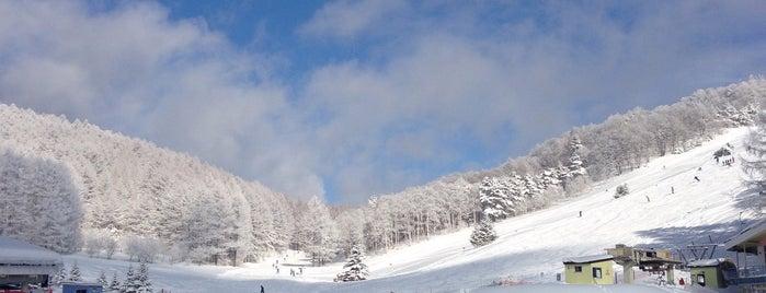 峰の原高原スキー場 is one of Lieux qui ont plu à ジャック.