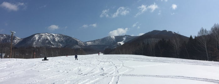 Takatsue Ski Resort is one of Posti che sono piaciuti a ジャック.