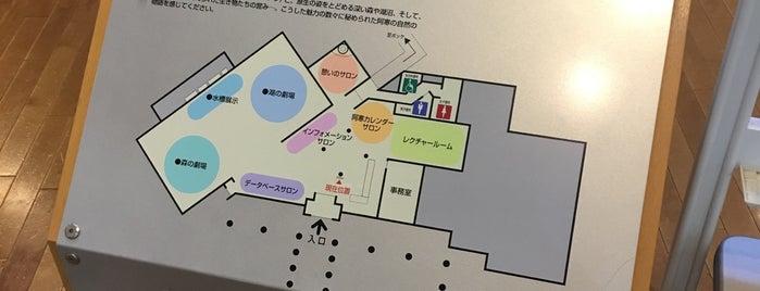 阿寒湖畔エコミュージアムセンター is one of ジャック'ın Beğendiği Mekanlar.