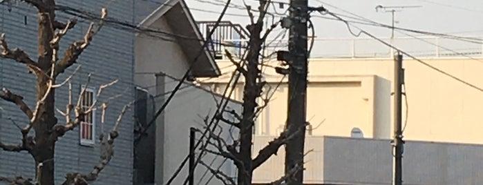 Koemon is one of Lugares favoritos de ジャック.