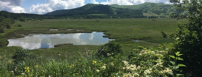 八島ヶ原湿原 is one of Tempat yang Disukai ジャック.