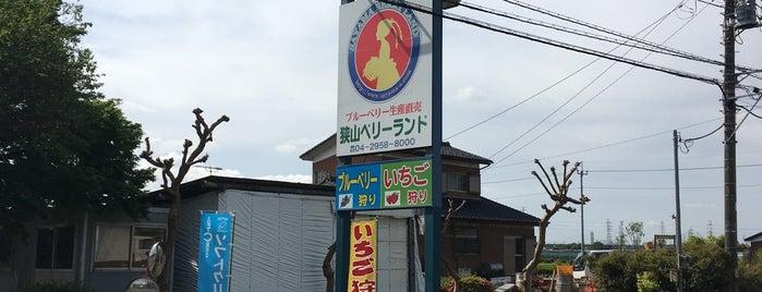 狭山ベリーランド is one of 観光地.