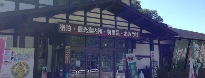舘岩広域観光案内所 is one of Tempat yang Disukai ジャック.