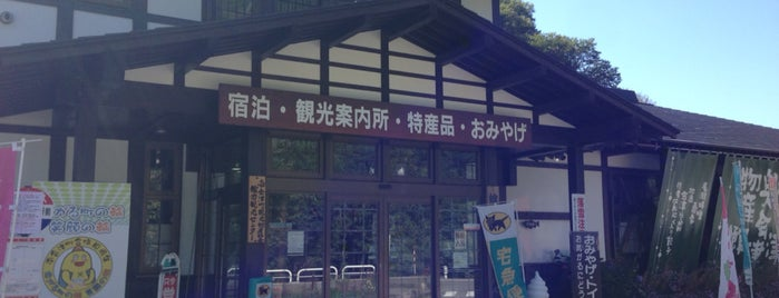 舘岩広域観光案内所 is one of สถานที่ที่ ジャック ถูกใจ.