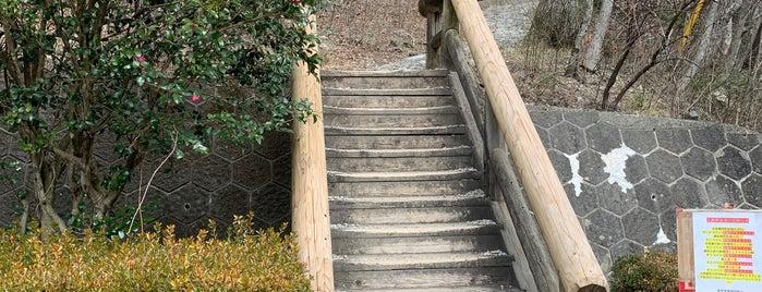 竜化の滝入口 is one of Tempat yang Disukai ジャック.