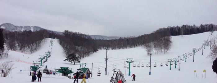 水上高原藤原スキー場 is one of スキー場.