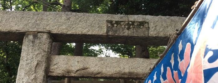 和泉 熊野神社 is one of 神社.