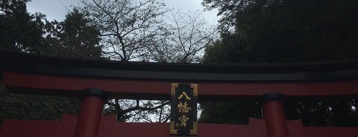 大宮八幡宮 is one of Lieux qui ont plu à ジャック.