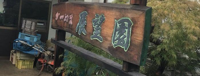 民宿展望園 is one of ジャック : понравившиеся места.