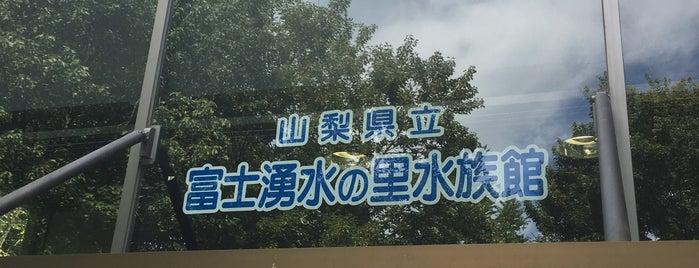 山梨県立富士湧水の里水族館 is one of สถานที่ที่ ジャック ถูกใจ.