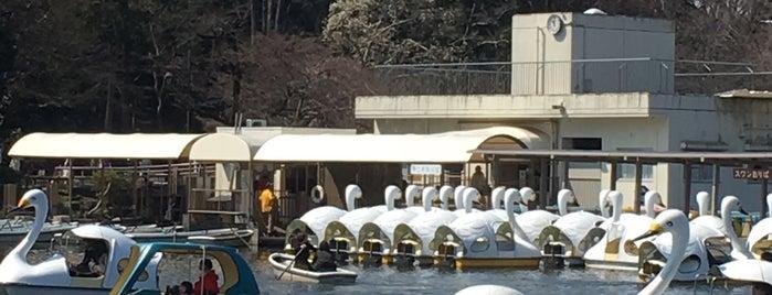 井の頭公園ボート場 is one of Tempat yang Disukai ジャック.