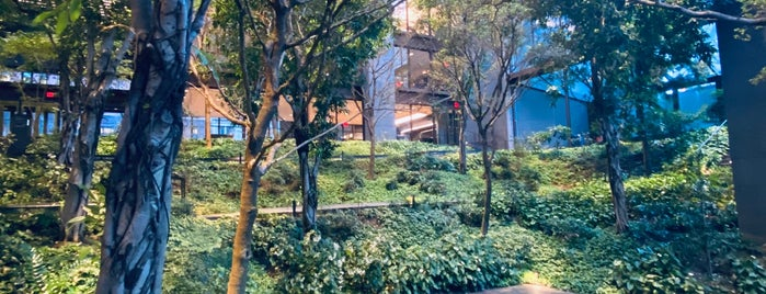 Ford Foundation Garden is one of Atlas Obscura NYC.