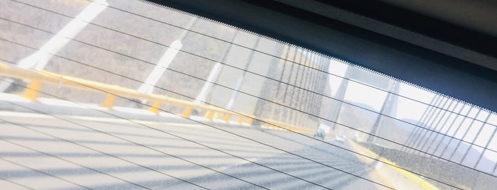 Puente Orizaba is one of สถานที่ที่ SoyElii ถูกใจ.