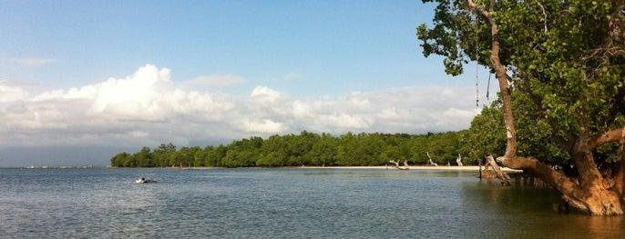 Pristine Palawan Beach is one of Puerta Princessa.