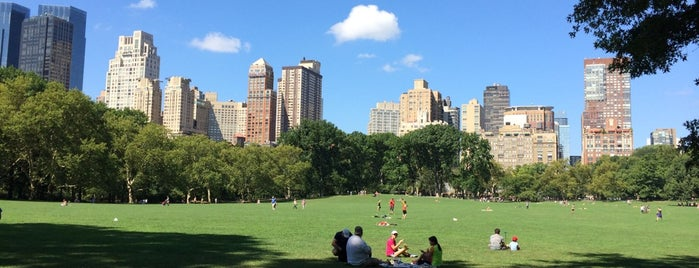 Central Park is one of New York must sees.