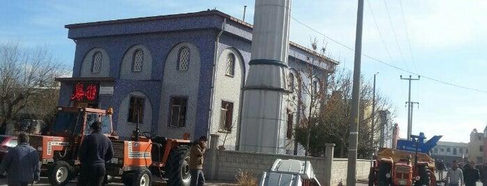 Traktör Pazarı Camii is one of Konya Karatay Mescit ve Camileri.