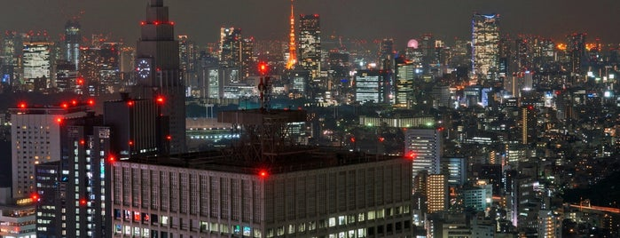 North Observatory, Tokyo Metropolitan Government Building is one of 東京タワーの撮影スポット.