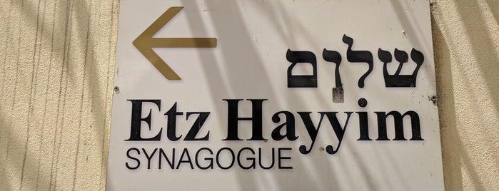 Etz Hayyim Synagogue is one of Crete.