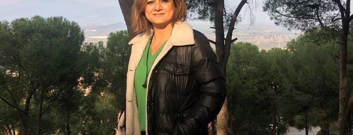 Tire Belediyesi Toptepe Aile Gazinosu is one of Lugares favoritos de emre onur.