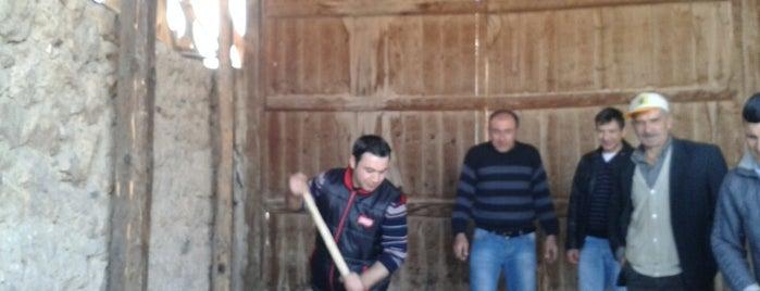 Ortaca is one of Kütahya | Aslanapa İlçesi Köyleri.