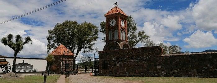 Hacienda Los Picachos is one of Restaurantes.