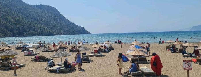 İztuzu Plajı Caretta Caretta Rehabilitasyon Merkezi is one of Plaj ve Koylar.