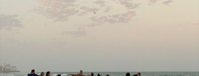 South Pointe Beach is one of Lugares favoritos de Stephanie.