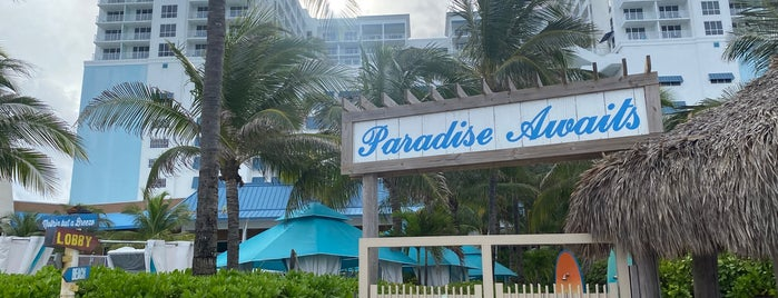 Margaritaville Hollywood Beach Resort is one of Locais curtidos por Maiddi.