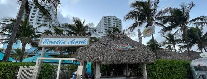 Margaritaville Hollywood Beach Resort is one of David'in Beğendiği Mekanlar.