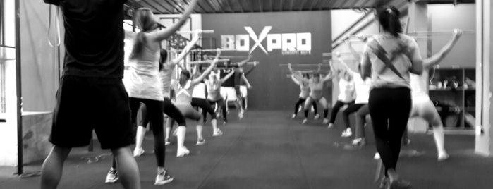 BoxPro CrossFit Elite is one of สถานที่ที่ M. Ezequiel ถูกใจ.