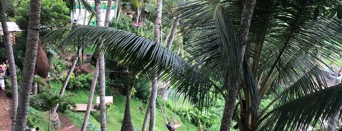 My Swing Bali is one of Lieux sauvegardés par Lam.