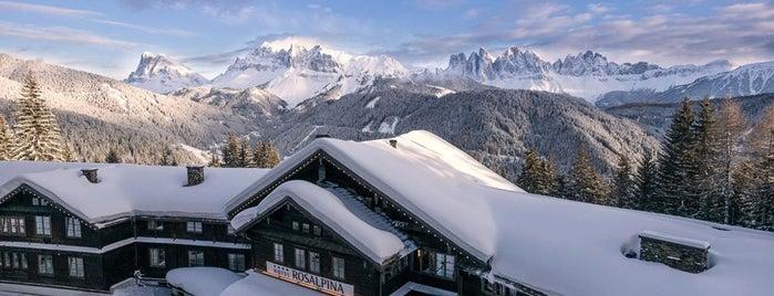 Hotel Rosalpina Dolomites is one of Bucket List.