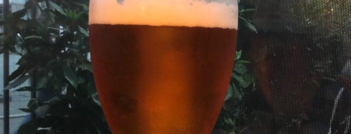 Beer Batumuri is one of Batum.