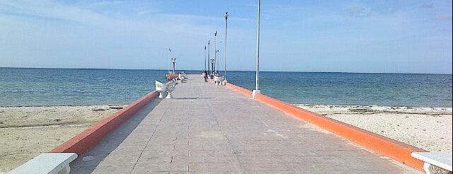 Telchac Puerto is one of สถานที่ที่ Hector ถูกใจ.