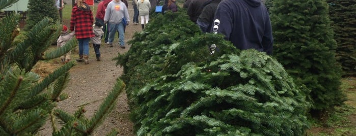 Coates Christmas Tree Farm is one of Locais curtidos por Kari.
