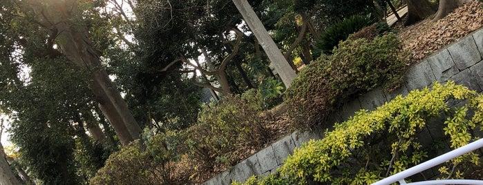 すずめのお宿緑地公園 is one of 公園.
