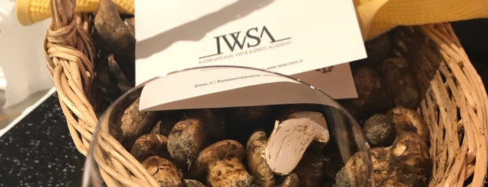 İWSA is one of istanbul.