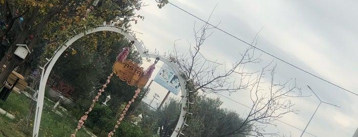 Asya Garden is one of Edremit.