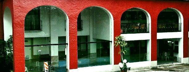 Fiesta Inn is one of Lugares favoritos de Andrea.