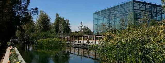 Parque Bicentenario is one of Places To Discover..