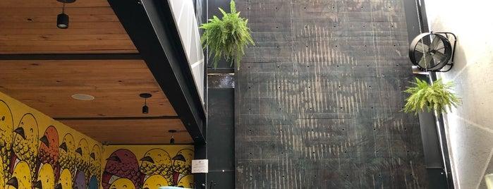 Silverio Urban Coffee & Shop is one of Querétaro.