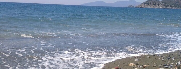 Gavur Deresi Plajı is one of muğla.