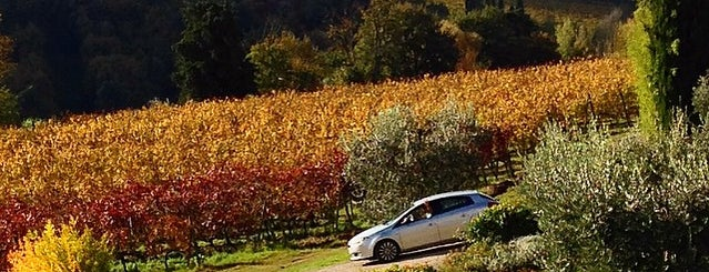 Giardastelle - Agriturismo And Vineyard is one of 4sq Specials in Tuscany.
