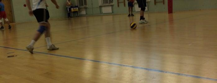 Спортивная школа олимпийского резерва по волейболу is one of children's menu.